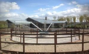 horse-walker-molenkoning-holland